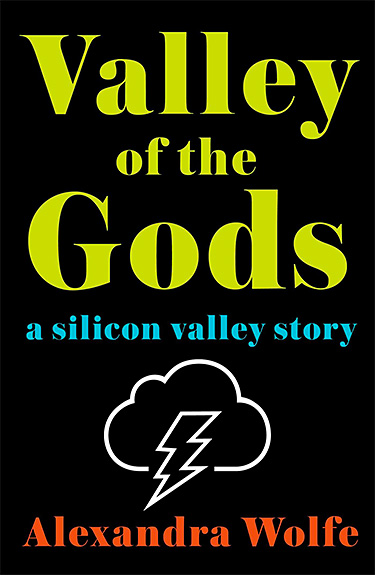 Valley of the Gods: A Silicon Valley Story at werd.com