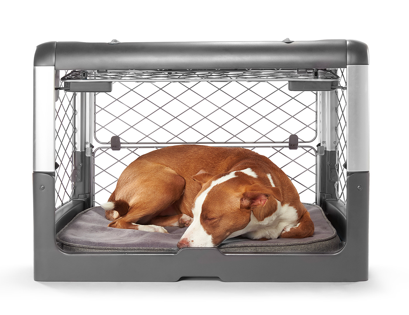 Your Pet's New Diggs Really Feels Like Home at werd.com