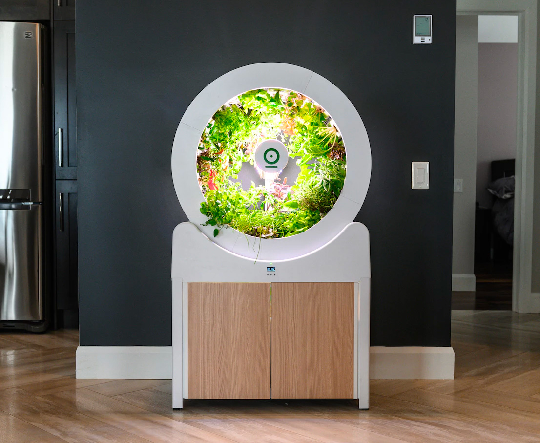 OGarden Makes Growing Your Own Easier Than Ever at werd.com
